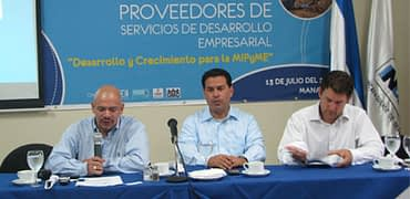 servicios_de_desarrollo